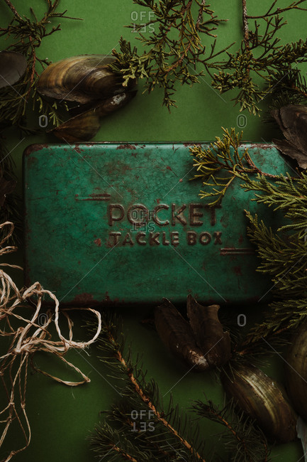 Top view of a rusty green tacklebox on green background with pine branches and clam shells
