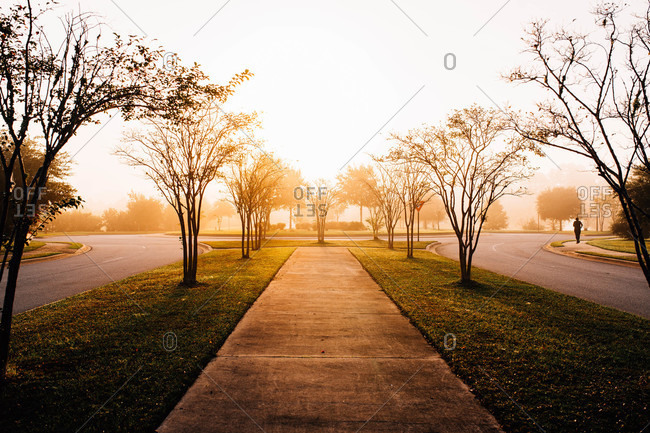Jogger in the distance at a quiet park in early morning light