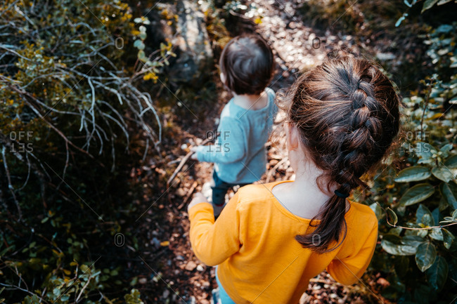 Two little girls walking in the forest at autumn