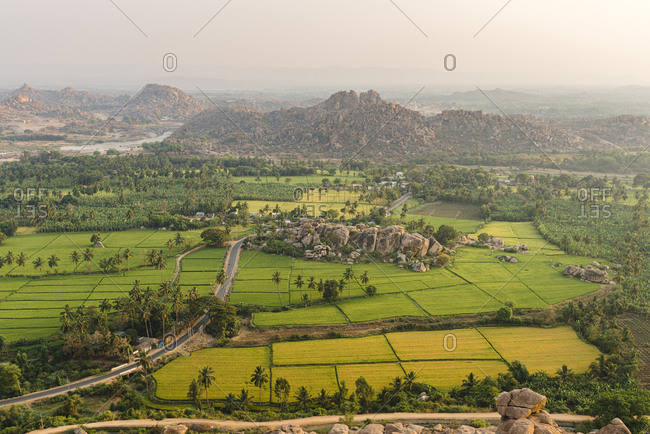 Bird's eye view from Monkey Temple of rice fields and palm trees at dusk in Hampi Island, India, Karnataka