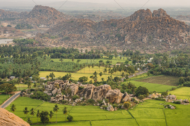 Bird's eye view over green rice fields at sunset viewed from Monkey Temple in Hampi, Karnataka, India