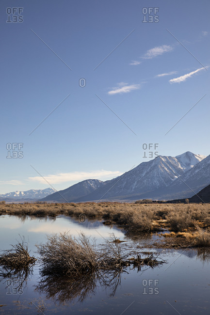 Swampy lake near snowy mountain in Genoa, Nevada