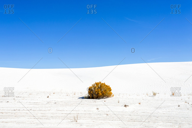 Sand Dunes and gypsum at White Sands National Monument, New Mexico