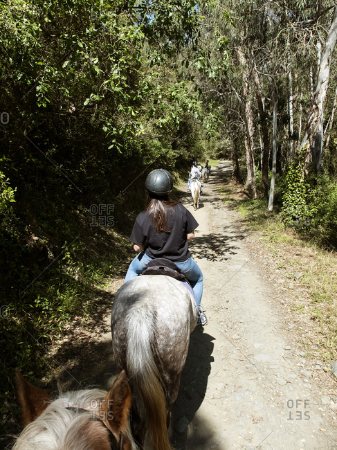 Back view of Group of horseback riders in pathway