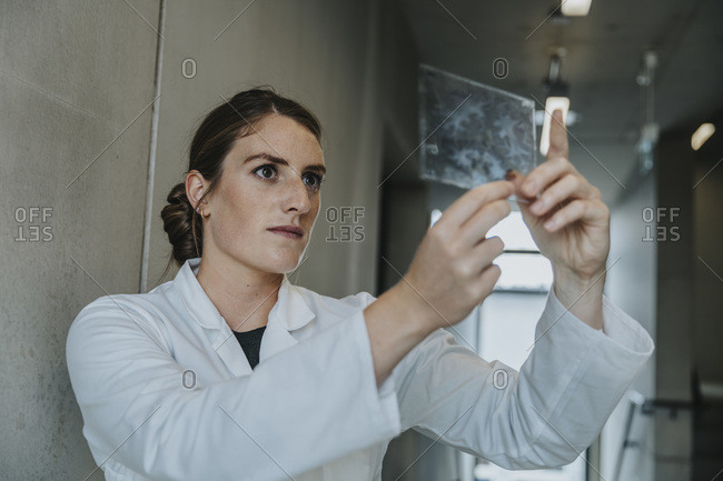 Female scientist examining human brain glass sample while standing at clinic corridor