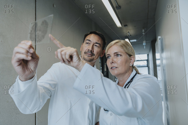 Doctor and scientist examining brain glass sample while standing at clinic corridor