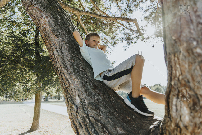 Boy lying down with hands behind head on tree trunk in public park during sunny day