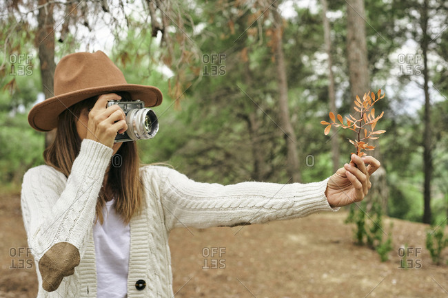 Woman photographing Pistacia Lentiscus leaves through vintage camera in forest