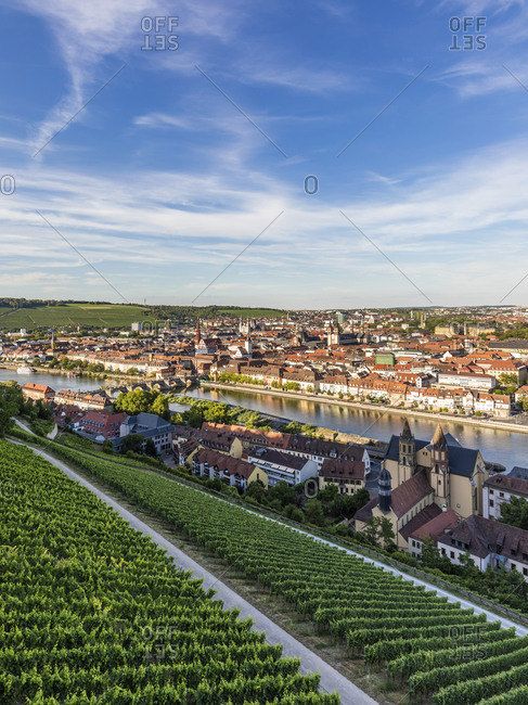 Germany- Bavaria- Wurzburg- Vineyard and houses of riverside city at dusk