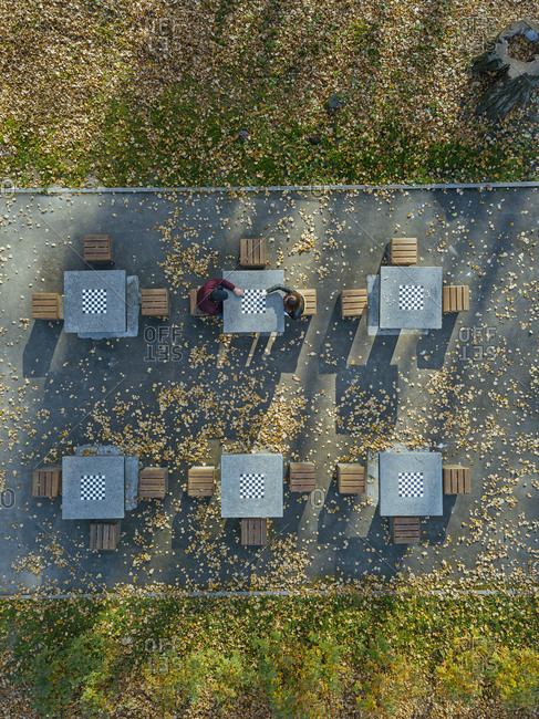 Boyfriend and girlfriend playing chess at table in park during autumn