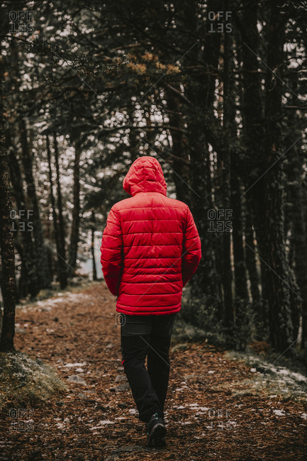 Young man wearing warm clothes walking in forest during winter