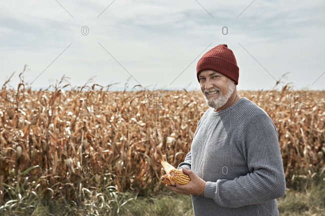 Smiling farmer holding corn while standing at corn farm