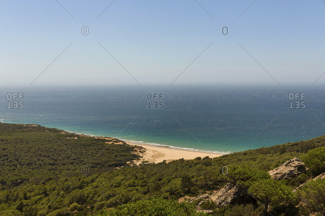 Forested coastline of Mediterranean Sea in summer