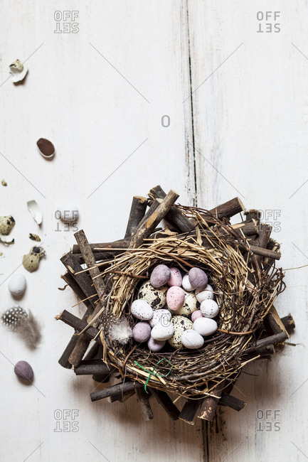 Birds nest filled with quail and Easter eggs