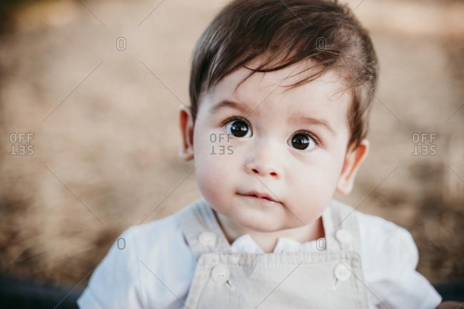 Innocent baby boy sitting outdoors