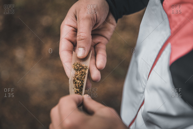 Hands of man rolling joint