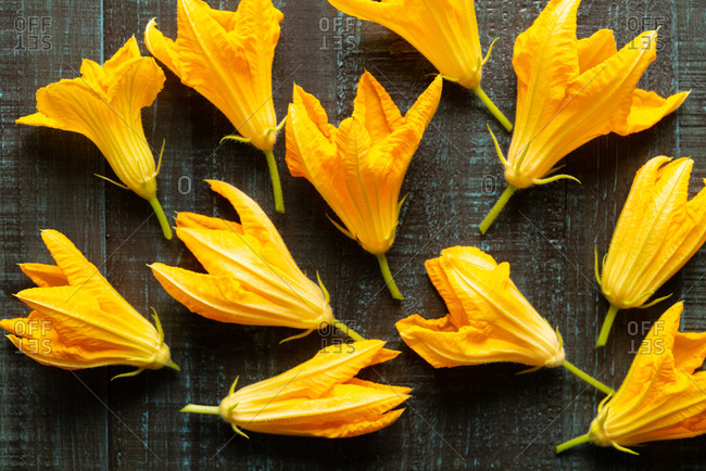 Fresh squash blossoms from the garden