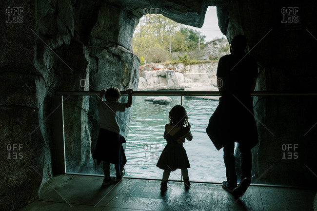A family visiting an aquarium in Connecticut together