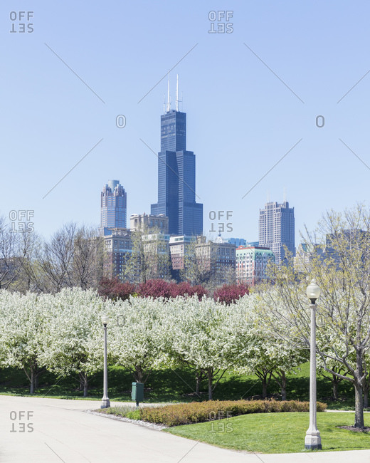 Modern skyscrapers seen from Grant Park on sunny day- Chicago- USA