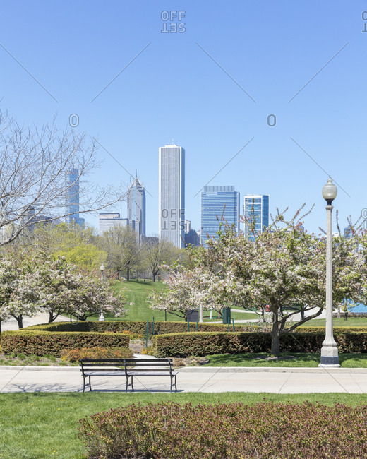 Skyscrapers seen from Grant Park- Chicago- USA