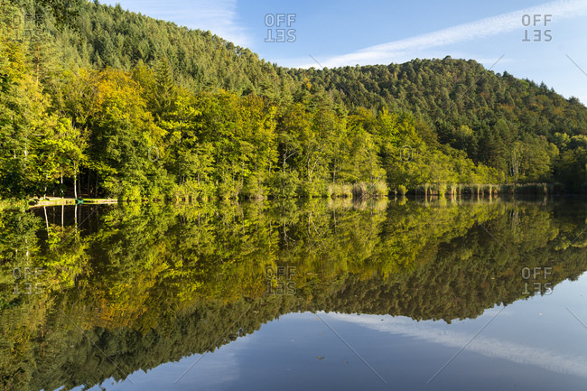 Green forest trees reflecting on shiny surface of Seehof-Weiher lake