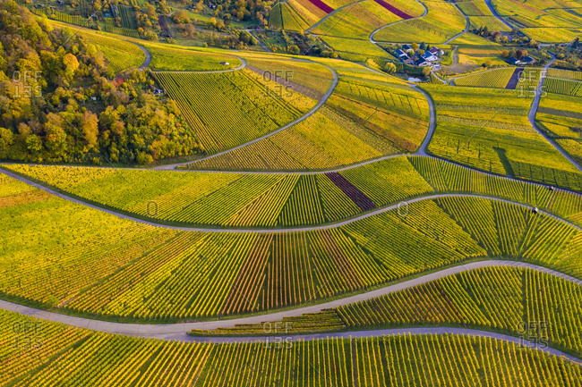 Germany- Baden-Wurttemberg- Rotenberg- Aerial view of vast countryside vineyards at autumn dusk