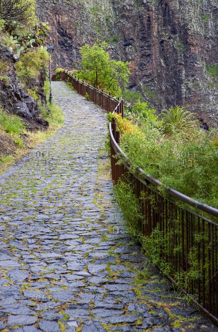Spain- Province of Santa Cruz de Tenerife- Calle Lomo de Masca- Cobblestone footpath in Macizo de Teno range