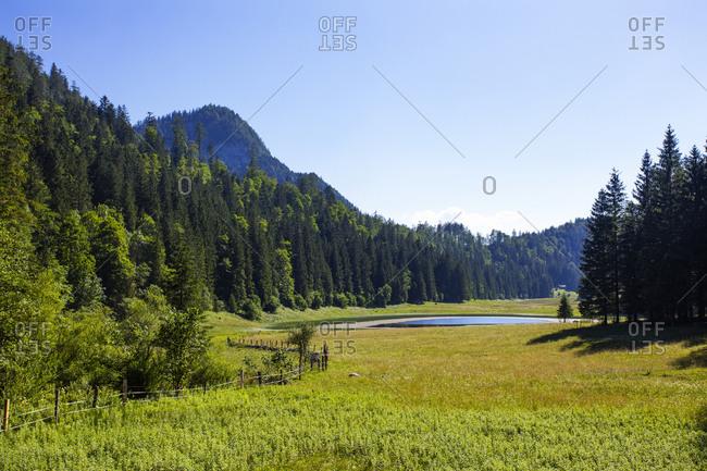 Scenic view of landscape against clear sky- Salzkammergut- Austria
