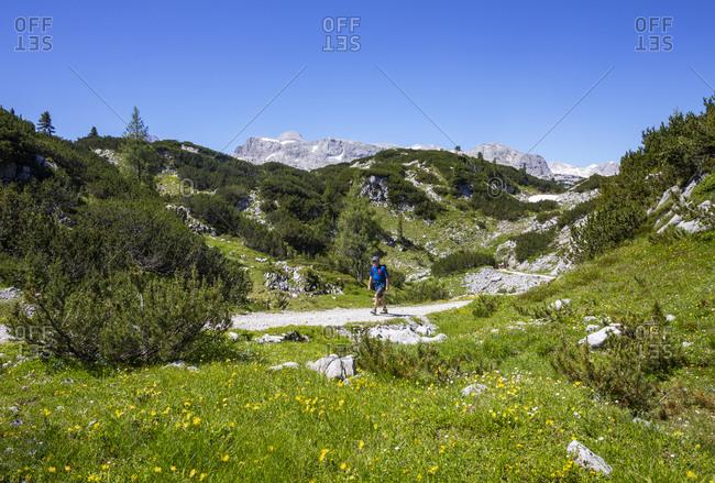Senior man hiking in Hoher Dachstein during summer