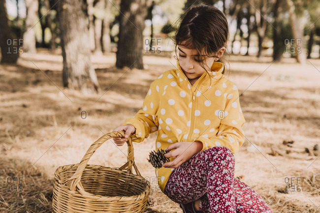 Girl kneeling while collecting pine cone in wicker basket at park