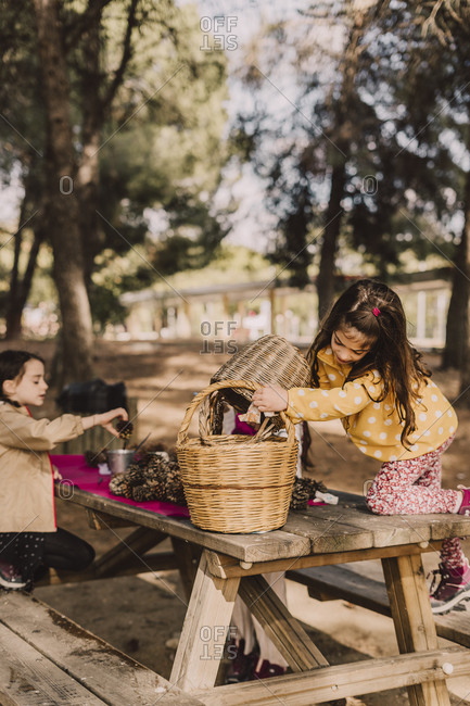 Girl collecting pine cone in wicker baskets at picnic table