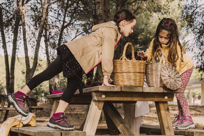 Sisters with wicker baskets at picnic table in park
