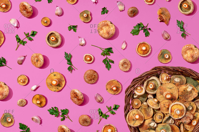 Large group of mushrooms- parsley and garlic on pink background