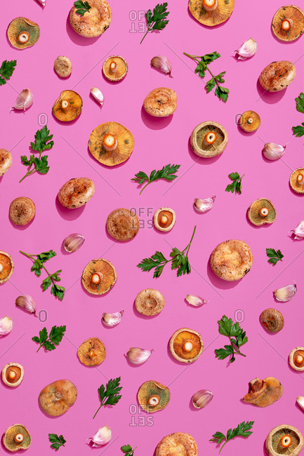 Large group of mushroom- parsley and garlic on pink background