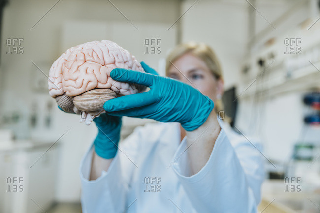 Mature woman holding artificial human brain while standing at laboratory
