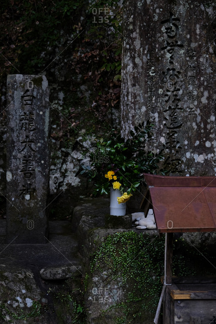 Wakayama, Japan - November 16, 2017: Old tombstones in a cemetery with yellow flowers
