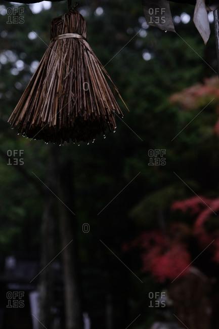 Water droplets on shimenawa tassel hanging outside