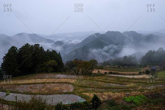 Bird's eye view over rice paddies with foggy mountains in the distance in Wakayama, Japan