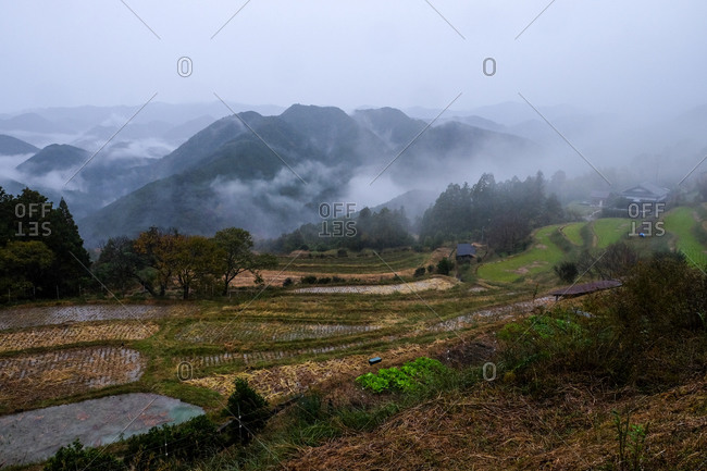 View over rice paddies with foggy mountains in the distance in Wakayama, Japan