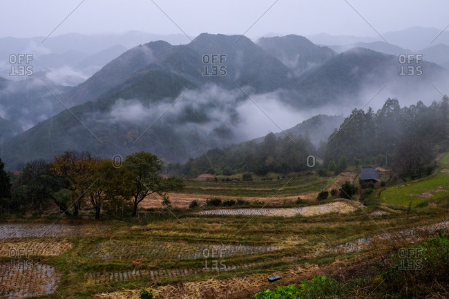 Foggy mountain landscape with rice paddies in the foreground in Wakayama, Japan