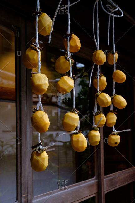 Drying persimmons hanging outside ryokan window