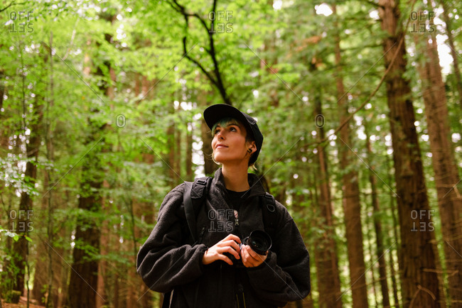 Low angle of traveling female photographer standing in woods with camera and enjoying nature in Monte Cabezon Natural Monument of Sequoias in Cantabria