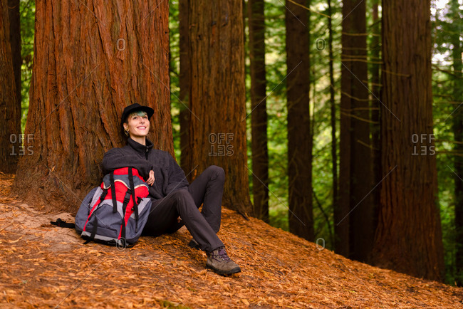 Delighted explorer with backpack sitting near huge tree in forest and resting during trekking in Monte Cabezon Natural Monument of Sequoias while looking up