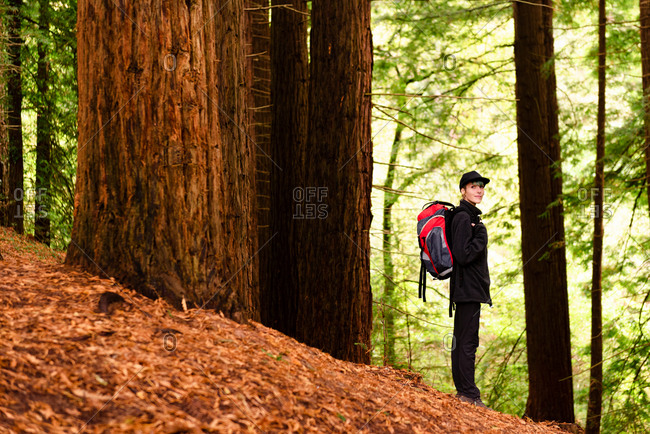 Side view content female tourist with backpack standing in woods and enjoying amazing scenery of big trees in Monte Cabezon Natural Monument of Sequoias
