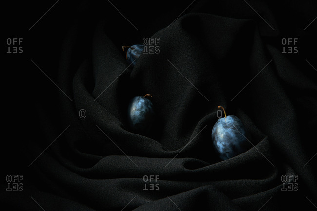 Some grapes on thin stems placed on dark black wrinkled cloth in studio