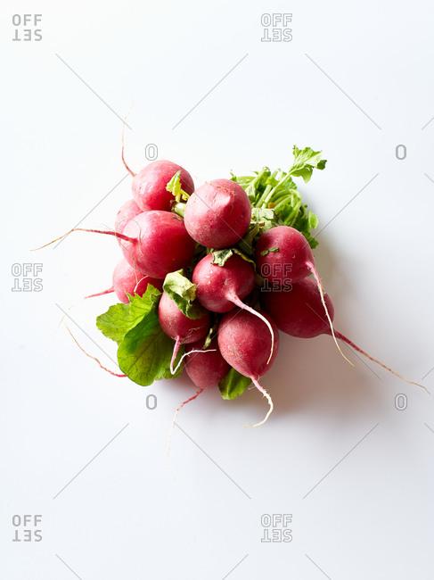 Fresh radishes on white background