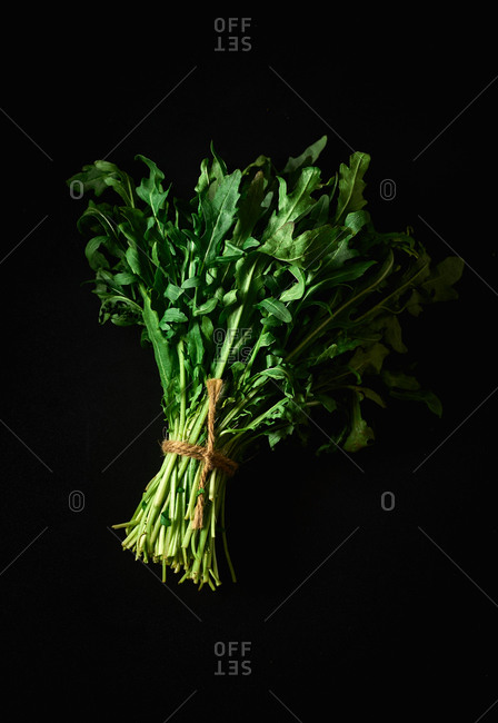 A bunch of fresh rocket salad on black background