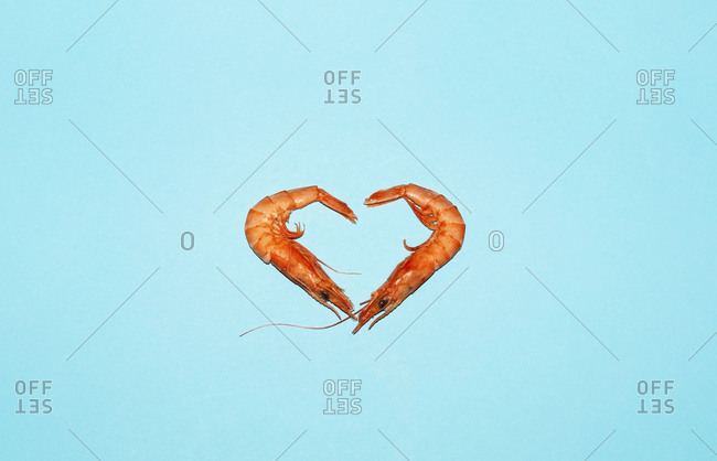 Raw prawns placed in shape of heart on bright blue background in studio