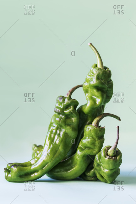 Closeup of dry green jalapeno peppers arranged on light green background and showing concept of elderly wrinkled people