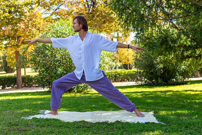 Tranquil male standing on blanket in park in Virabhadrasana and practicing yoga on summer day in lush garden while looking away